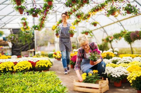 Supporting Sustainable Food Security: the Horticulture Business Option