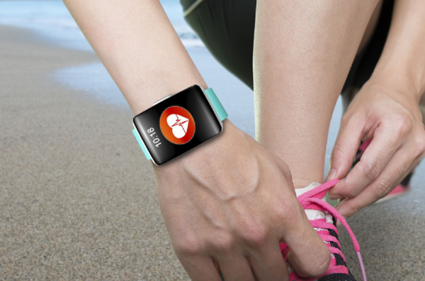 What is a Health and Wellness Tracking System?