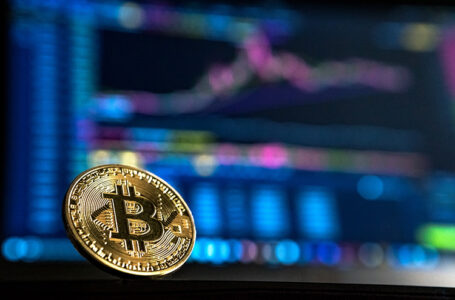 Purchase Bitcoin Web Hosting per the need